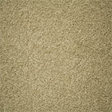 carpet-flooring-perth-euodia-light-earth