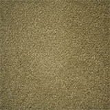 carpet-flooring-perth-euodia-tree-barley
