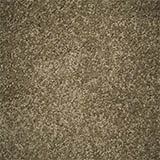 carpet-flooring-perth-euodia-tree-riversand