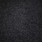 Carpet Flooring Perth Euodia Tree Coal