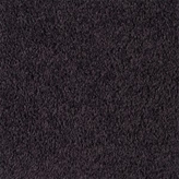 Carpet Flooring Perth Hickory Tree Blood Plum