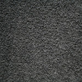 Carpet Flooring Perth Hickory Tree Shade