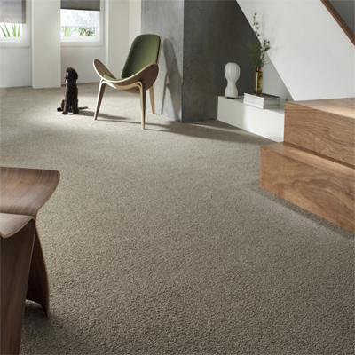 Carpet Flooring Perth Port Macdonnell Sample Design