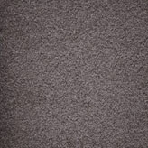 Carpet Flooring Perth Cassia Tree Jarrah