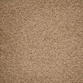 Carpet Flooring Perth Cassia Tree Rattan