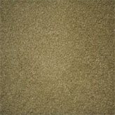Carpet Flooring Perth Euodia Tree Barley