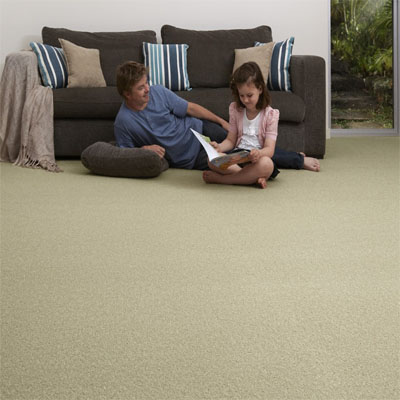 Carpet Flooring Perth Hickory Tree Sample Design