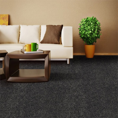 Carpet Flooring Perth Winston Soft E Sample Design