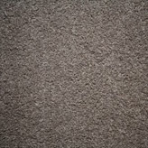 Carpet Flooring Perth Winston Soft E Trilby