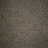 Indigo Tree Crocodile Carpet Flooring Perth Green