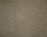 Brittlewood China Beige Carpet Flooring Perth Yellow Gold